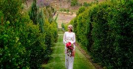 Luxury Wedding Venues in the Winelands