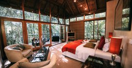 Honeymoon Special at Trogon House