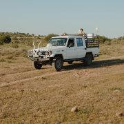 safari, safari wedding