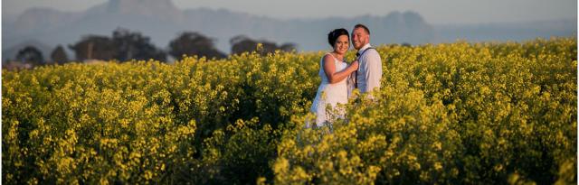 Our Top 3 Wedding Venues In Durbanville