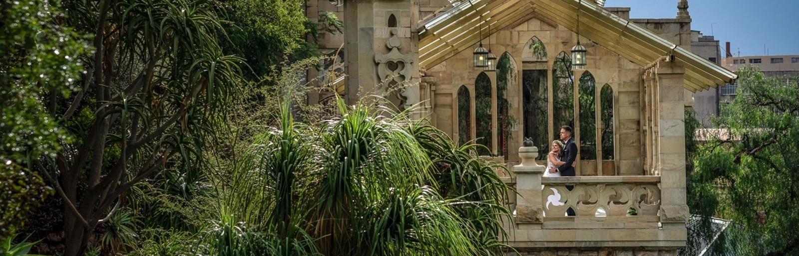 Shepstone Gardens Black Friday Special