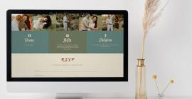 Owl & Pigeon Wedding Website Special