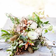 flowers, proteas