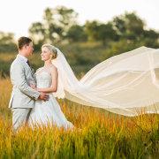 field, veil
