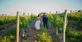 Top Wedding Venues In The Winelands