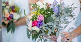 Wedding Insurance FAQ's