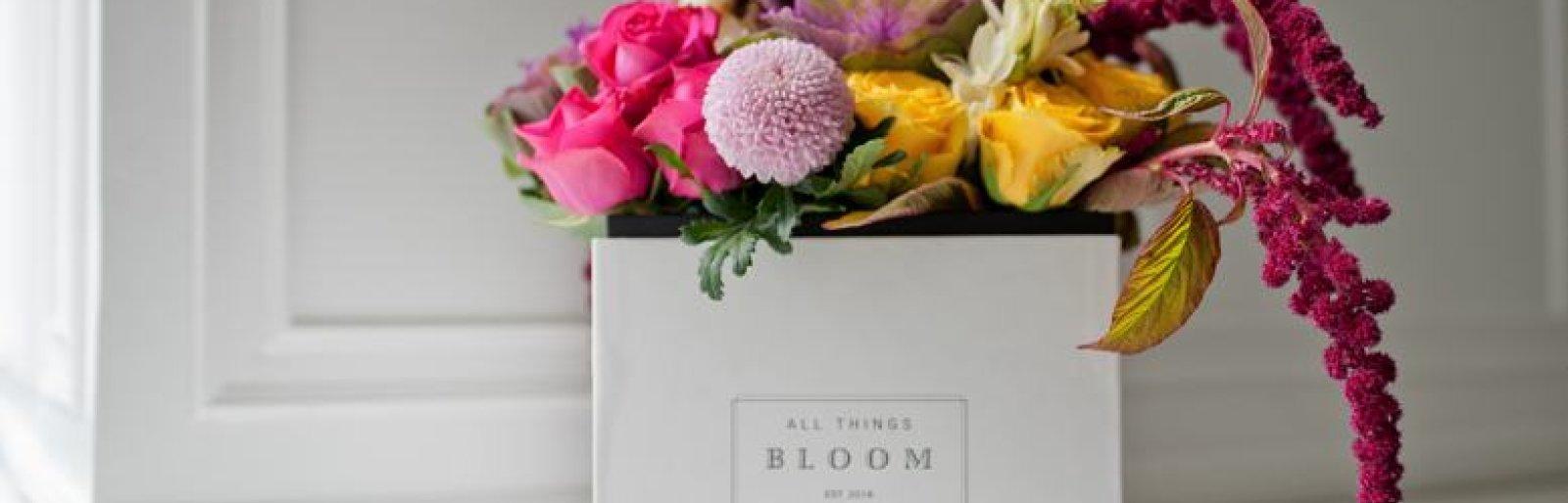 All Things Bloom