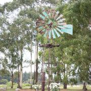 outdoor, wedding, windmill