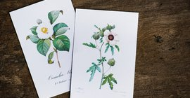 12 Hot Wedding Stationery Trends You Need To Know
