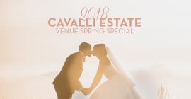 Warren-Stone Weddings & Cavalli Estate