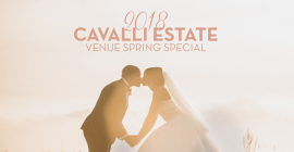 Warren-Stone Weddings & Cavalli Estate