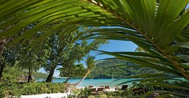 Constance Ephelia: The Perfect Seychelles Honeymoon Destination