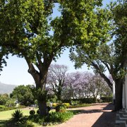 countryside, winelands, d\