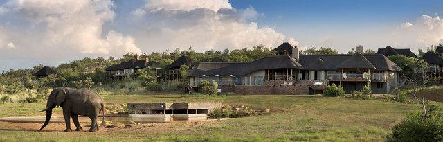 Mhondoro Safari Lodge Winter Special Offer