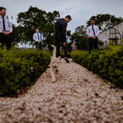 groom and groomsmen - LAFRIQUE Photography