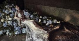Weddings By Design