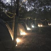 Wolfkop Camping Villages - Glamping & Rentals