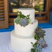 succulents, wedding cakes - Delana\