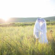 bride and groom, field, veil, safari