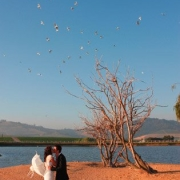 view, water, wedding venue, affordable venues - Skilpadvlei Wine Farm