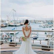 open back wedding dress, wedding dresses, wedding dresses, wedding gowns, intimate wedding venue, wedding dresses, intima - The Alba Restaurant