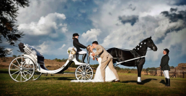 Regency Horse & Carriage