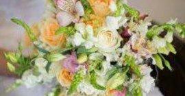 Blommeprag