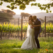 bride and groom, bride and groom, bride and groom, winelands - Lanzerac Hotel & Spa