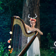 entertainment, harp, music - Jude Harpstar
