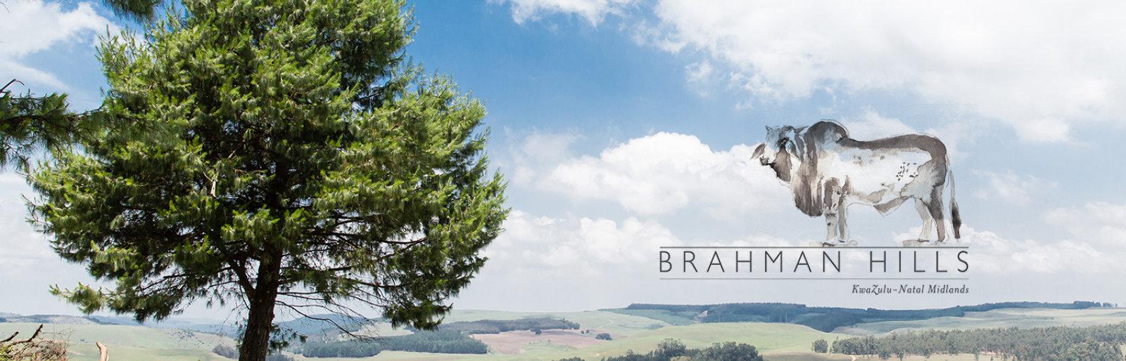 Brahman Hills