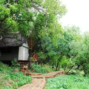 bush - Kuthaba Bush Lodge