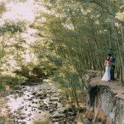 forest, river - Die Woud