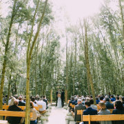 forest, outside ceremony - Die Woud