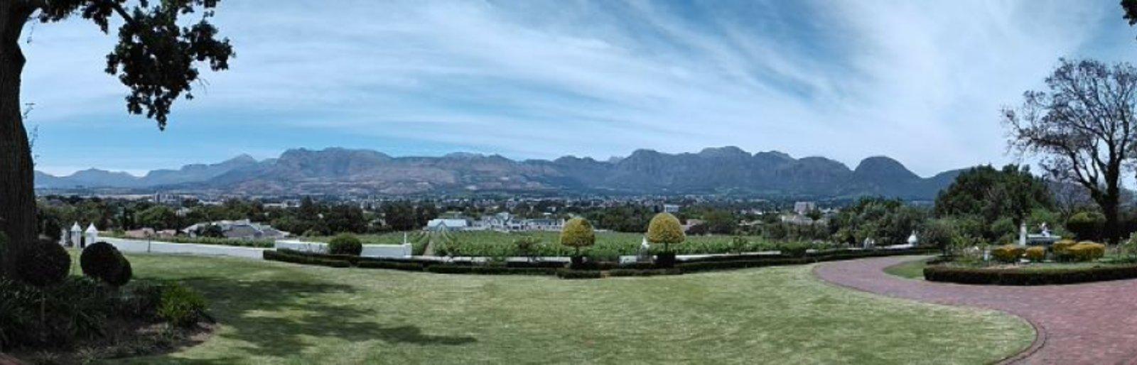 d'Olyfboom Family Estate
