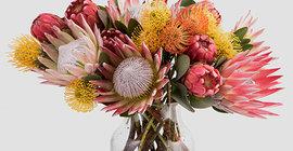 Franschhoek Flowers