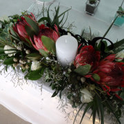 protea - ICT Flower Design