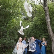doves, white doves - Kaitlyn De Villiers Photography