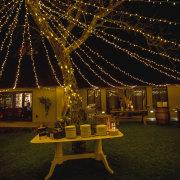 fairy lights, outdoor reception - Khaya Ndlovu Manor House