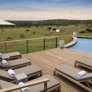 Mhondoro Safari Lodge & Villa