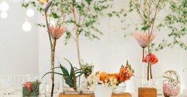 Okasie Florals