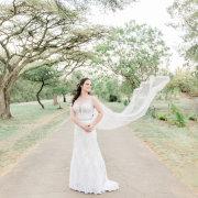 lace wedding dresses, veils, wedding dresses, wedding dresses, wedding gowns - Rosemary Hill