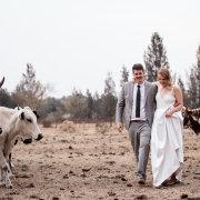 bride and groom, bride and groom, bride and groom - Rosemary Hill