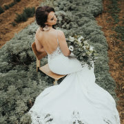 lace wedding dresses, wedding dresses, wedding dresses, wedding gowns - Rosemary Hill