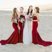 bride and bridesmaids, bridesmaids dresses, bridesmaids dresses - Ruan Redelinghuys Photography