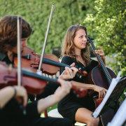 Simply Strings