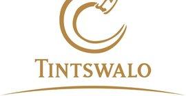 Tintswalo Properties