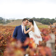 bride and groom, bride and groom, vineyards - Zandri Du Preez Photography