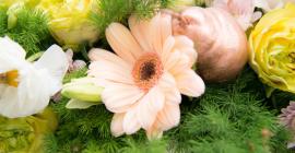 Kleine Marie Flowers