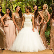 bride and bridesmaids, bridesmaids dresses, bridesmaids dresses, wedding dresses, wedding dresses, wedding gowns - 360 Link
