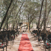 forest ceremony, outdoor ceremony - 360 Link